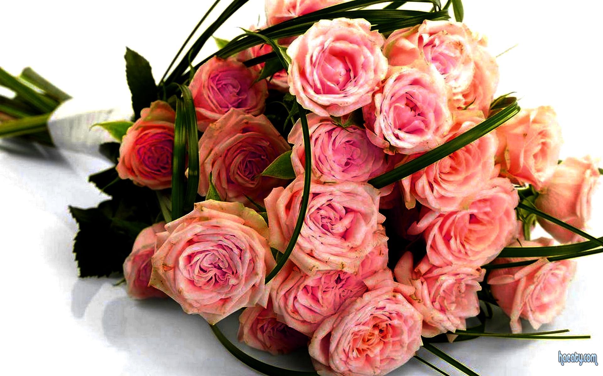 بالصور صور احلى صور باقات ورود للتهنئة جميلة جديدة , اجمل صور لباقات الورد 4054 7