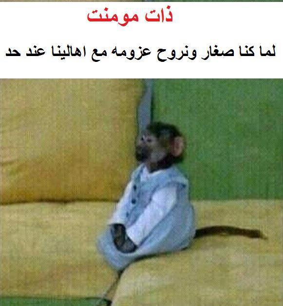 بالصور صور مضحكة , صور مضحكة للفيس بوك صور للضحك