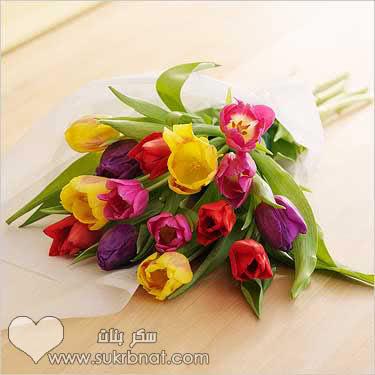 بالصور صور الورد , صورة ورد في غاية الجمال 4260 6