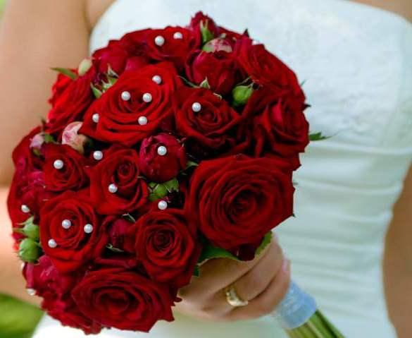 صوره صور ورد احمر اجمل صور الورد الاحمر ورود حلوة , خلفيات زهور ملونه