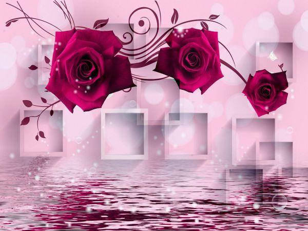 بالصور صور ورود من اروع خلفيات سطح المكتب خلفيات رومانسية من اجمل صور لسطح المكتب , بوستات للزهور المميزة 4154 6