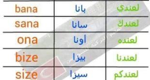 صور تعلم اللغه التركيه , ايام الاسبوع باللغة التركية