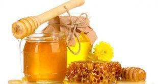 بالصور فوائد عسل الزكوم , فائدة عسل الزكوم 11438 3 310x165