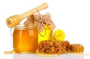 صورة فوائد عسل الزكوم , فائدة عسل الزكوم