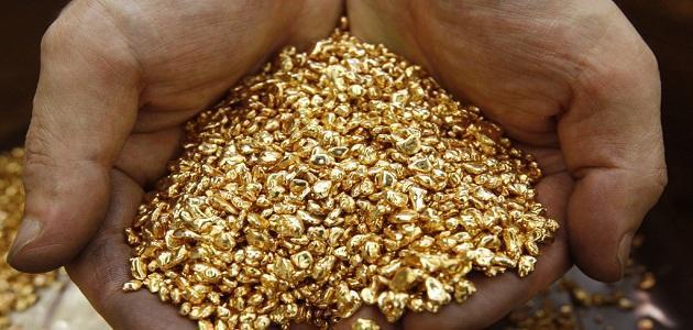 بالصور طريقة البحث عن الذهب , اسهل طريقة البحث عن الذهب 11448 2