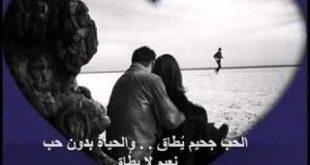 صورة قالو في الحب , وواااو كلام للحب عمري ماقرتو