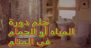 صور تفسير التواليت في المنام , راي ابن سيرين في رؤيه الحمام