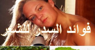صور طريقة غسل الشعر بالسدر , فوائد شجره السدر للشعر