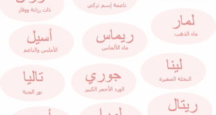اسماء بنات مصريه, احدث الاسماء 2020