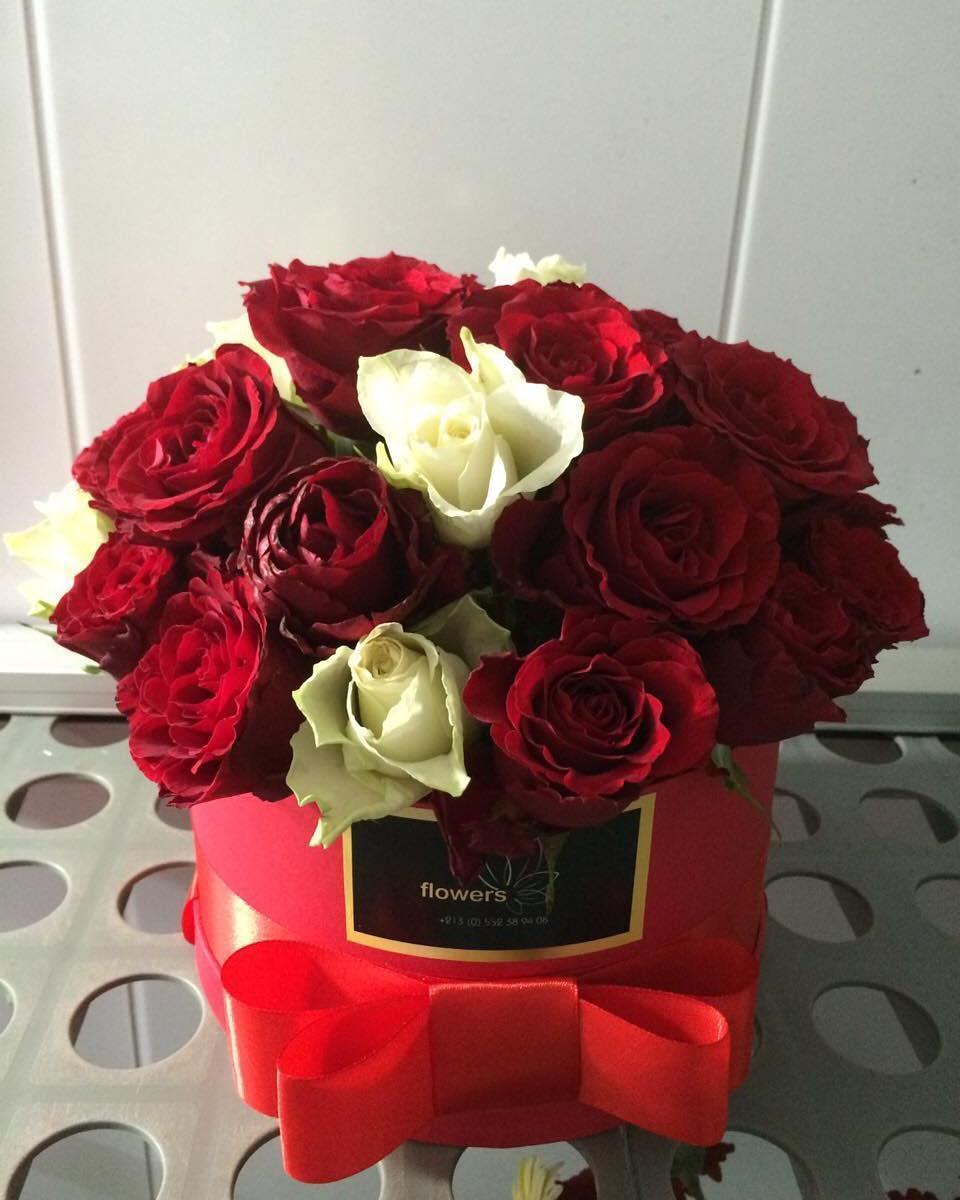 صورة اجمل صور الورود, اجمل الورود فى العالم 12754 9