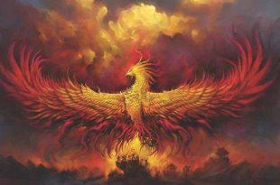 صورة طائر معمر يعيد ولادة نفسه في الاساطير ، قصة طائر الفينيق 12089 3 310x205